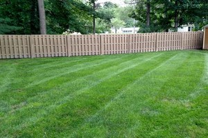 Photo #3: Need your lawn mowed? Feel free to contact Chris!
