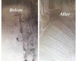 Photo #1: Elegant Touch Auto Detailing. 40$ Carpet and floor Deep cleaned