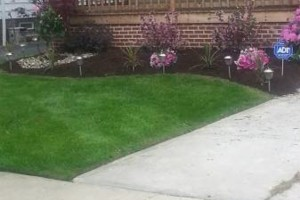 Photo #11: HunterGreen Services. Spring is here! We dont just cut! Get an estimate now! $20 per visit