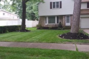 Photo #10: HunterGreen Services. Spring is here! We dont just cut! Get an estimate now! $20 per visit