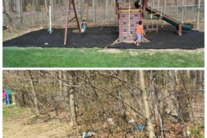 Photo #1: E-Z Landscaping! We are the spring clean-up pros!