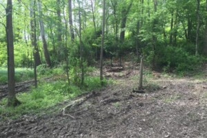 Photo #3: Black River Products and Services - Brush clearing, gravel driveway reshaping/grading, soil grading...