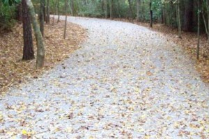 Photo #5: Black River Products and Services - Brush clearing, gravel driveway reshaping/grading, soil grading...