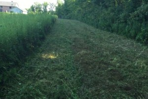 Photo #6: Black River Products and Services - Brush clearing, gravel driveway reshaping/grading, soil grading...
