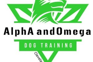 Photo #12: Alpha and Omega - PROFESSIONAL DOG TRAINING