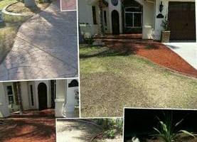 Photo #18: Torres Landscaping and Concrete (sprinklers system, sod, plants/concrete curbing, colored concrete)