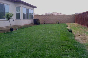 Photo #2: Gardening service - Weeding, Flower beds, Bush trimming
