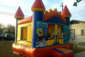 Photo #24: Party rentals! Jumpers, bounce house, tables, chairs, waterslides, canopies
