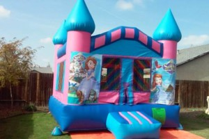 Photo #17: Party rentals! Jumpers, bounce house, tables, chairs, waterslides, canopies