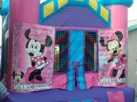Photo #16: Party rentals! Jumpers, bounce house, tables, chairs, waterslides, canopies