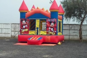 Photo #14: Party rentals! Jumpers, bounce house, tables, chairs, waterslides, canopies
