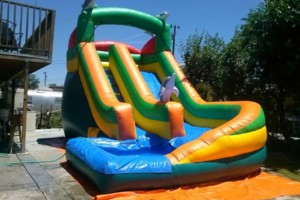 Photo #12: Party rentals! Jumpers, bounce house, tables, chairs, waterslides, canopies