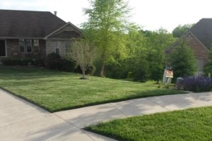Photo #2: PENNA'S LAWN CARE - mowing, trimming, blowing