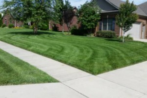 Photo #1: PENNA'S LAWN CARE - mowing, trimming, blowing
