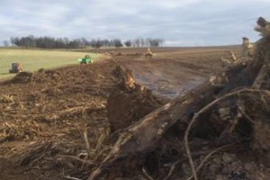 Photo #6: Land clearing and excavating