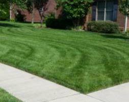 Photo #3: Lawn Mowing Richmond/Lexington area. Free low estimates!