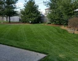 Photo #2: Lawn Mowing Richmond/Lexington area. Free low estimates!