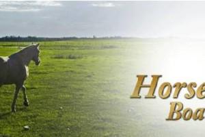 Photo #1: Horse Boarding in Minnich farm
