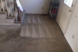 Photo #10: New Look Carpet Cleaning. Special Pricing! $15 for stairs!