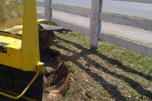 Photo #12: Reinstorf's Stump Grinding Service