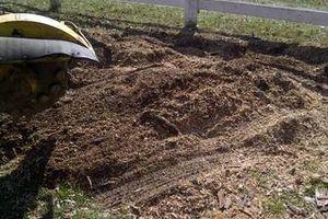 Photo #2: Reinstorf's Stump Grinding Service