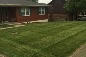 Photo #1: T&D Turf Management - INSURED - Mowing, Landscaping and MORE