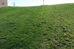 Photo #6: Mowing, Tree topping & Landscaping Services