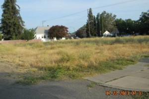 Photo #8: Tractor Work Lot Clearing, Discing/ Mowing/ Rototilling