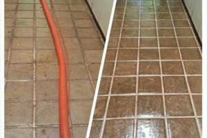 Photo #10: GUZMAN CARPET AND TILE CLEANING