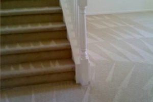 Photo #8: GUZMAN CARPET AND TILE CLEANING