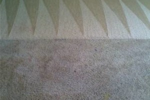 Photo #7: GUZMAN CARPET AND TILE CLEANING