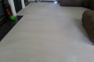 Photo #2: GUZMAN CARPET AND TILE CLEANING