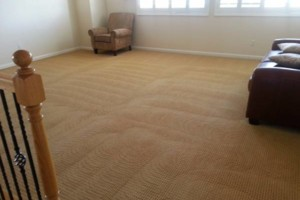 Photo #1: GUZMAN CARPET AND TILE CLEANING