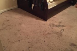 Photo #20: STOCKTON BEST QUALITY CARPET and TILE CLEANING
