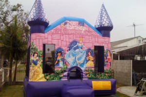 Photo #19: BOUNCE HOUSE/JUMPERS RENTAL (princess, spiderman castle)