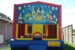 Photo #17: BOUNCE HOUSE/JUMPERS RENTAL (princess, spiderman castle)