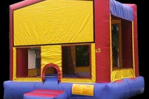 Photo #15: BOUNCE HOUSE/JUMPERS RENTAL (princess, spiderman castle)
