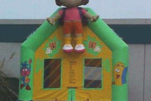 Photo #9: BOUNCE HOUSE/JUMPERS RENTAL (princess, spiderman castle)