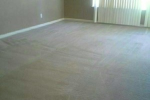 Photo #2: FRESH CARPET CLEANING & Windows CLEANING