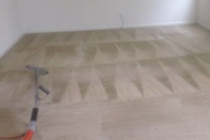 Photo #8: CARPET CLEANING - 3 ROOMS & HALLWAY $69