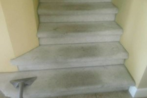 Photo #6: CARPET CLEANING - 3 ROOMS & HALLWAY $69