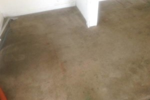 Photo #4: CARPET CLEANING - 3 ROOMS & HALLWAY $69