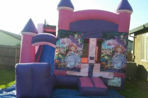 Photo #7: Mj's jumpers - jumpers for rent, tables chairs, waterslides...