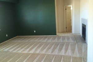 Photo #11: PERFORMANCE CLEAN CARPET CLEANING (dry in 4 to 6 hours)