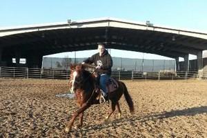 Photo #7: Animal Rescue of Lathrop Inc. Atranch Horse Boarding