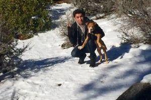 Photo #1: Walking dog