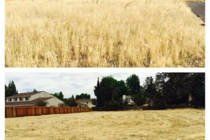 Photo #4: Mowing/Discing/Acreage/Lot Services