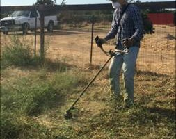Photo #1: Mowing/Discing/Acreage/Lot Services