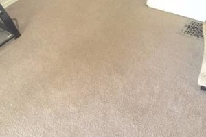 Photo #4: Guaranteed Clean Carpet Cleaning LLC