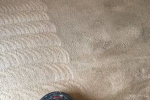 Photo #11: Guaranteed Clean Carpet Cleaning LLC
